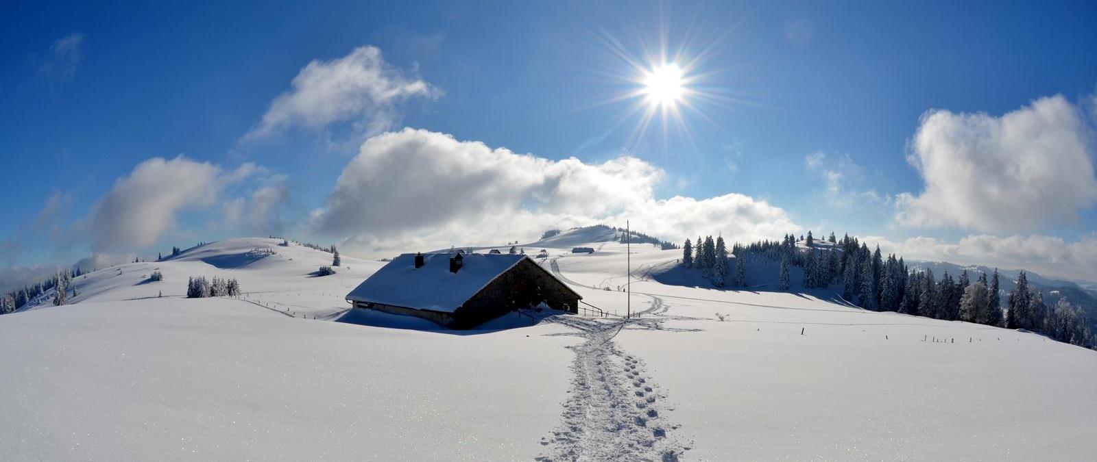 bandeau hiver