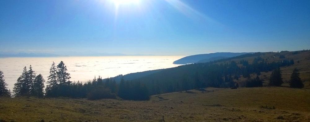 mer-de-brouillard-2016