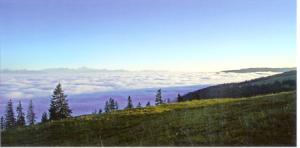20. Regard sur le Mont-Blanc